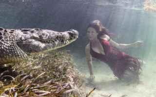Foto online: fotografia fiume coccodrillo