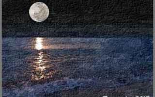 Amore e Coppia: giorno  notte  parole  poesia  silenzi