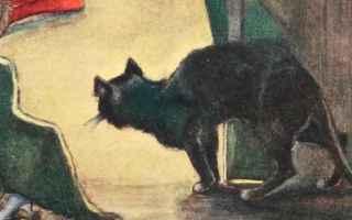 L8 Agosto si celebra la Giornata Internazionale del Gatto. Questo appuntamento, voluto solo pochi an