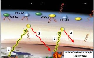 global warning  riscaldamento pianeta