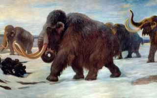 mammut  jurassic park  siberia