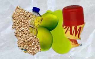 Olio di semi di canapa? Olio di cocco? Olio d'oliva?  Cosa è meno probabile faccia esplodere il t