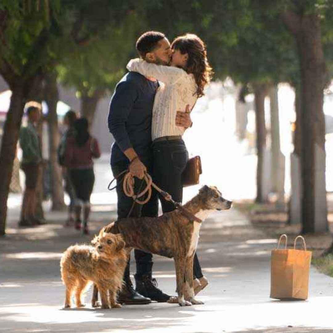 dog days  eva longoria film  cinema