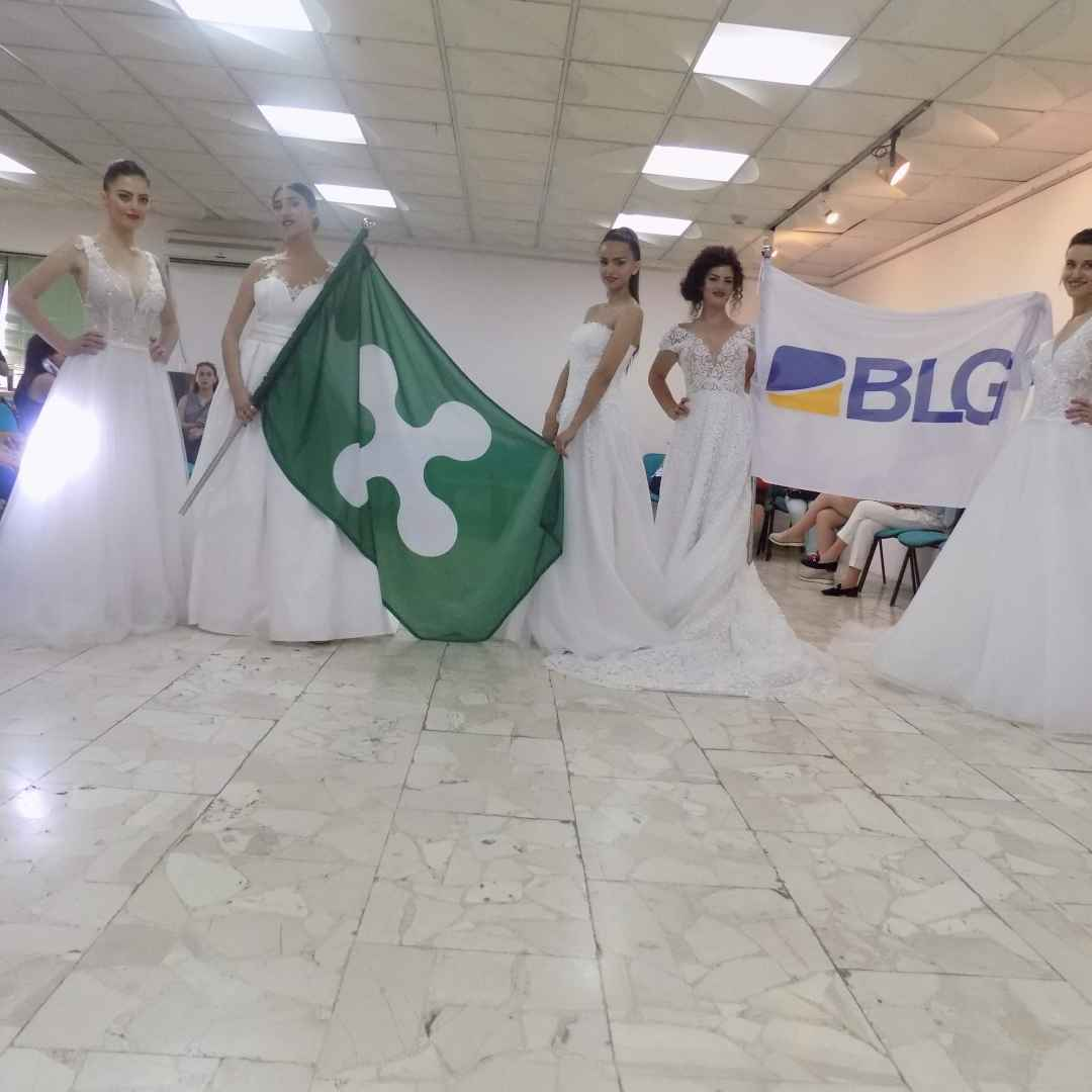 blg group  blg albania