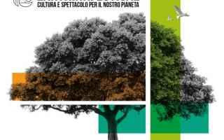 torino  festival  earththink