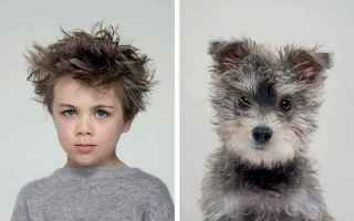 Foto online: cani fotografia cane