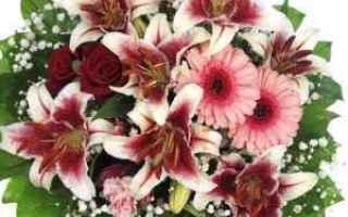 Foto: amore  fiori  relax  video