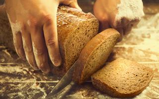 Alimentazione: Le fermentazioni primordiali. All
