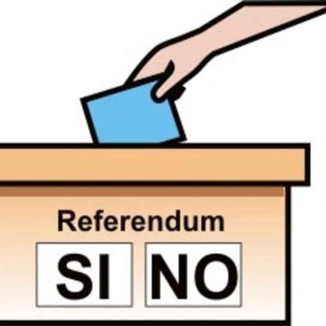 Tutto quello che devi sapere sul Referendum per la liberalizzazione del Trasporto pubblico a Roma