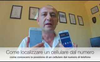 WhatsApp: cellulare smartphone whatsapp telefono