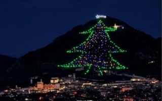 Notizie locali: natale gubbio albero video guinness