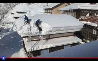 Video divertenti: giappone  neve  precipitazioni  inverno