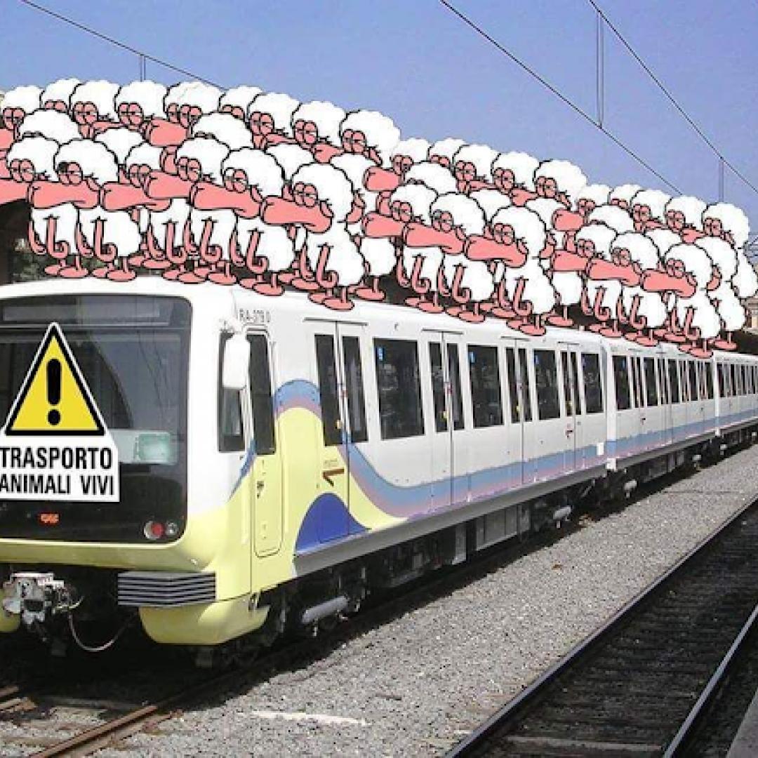 roma-lido  trasporto pubblico