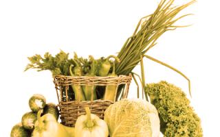 Alimentazione: fda  america  export