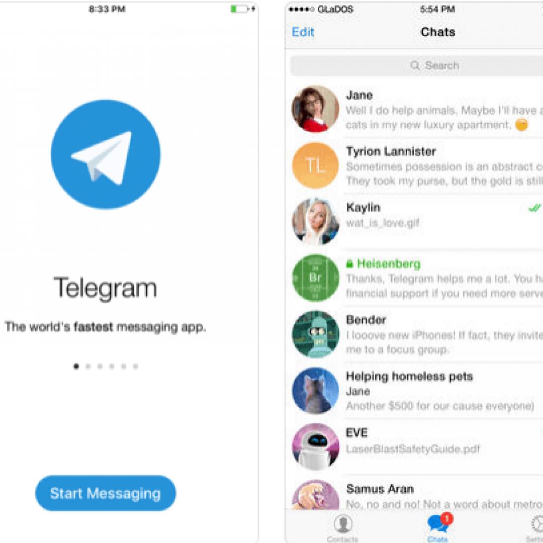 telegram chat social