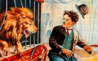 Animali: governo conte  animali  circo