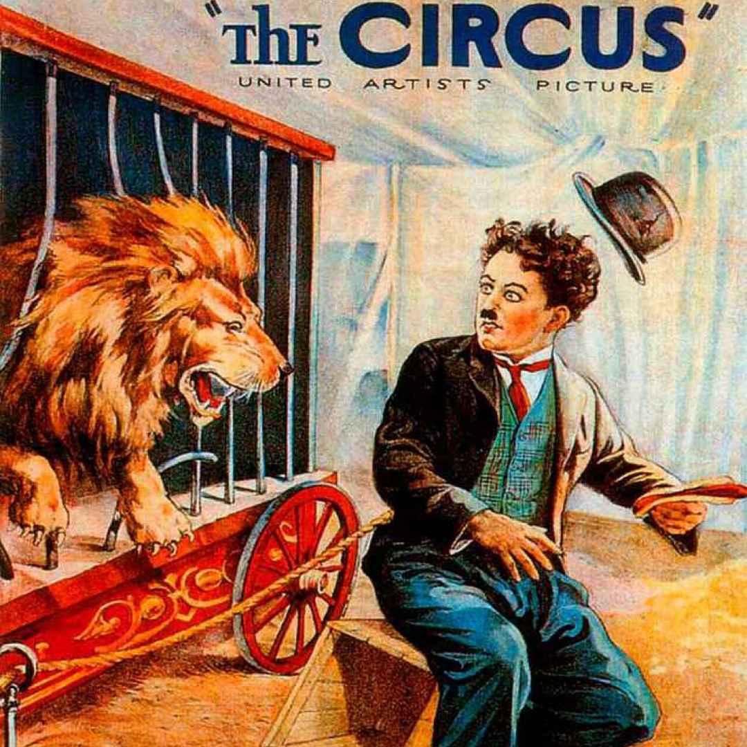 governo conte  animali  circo