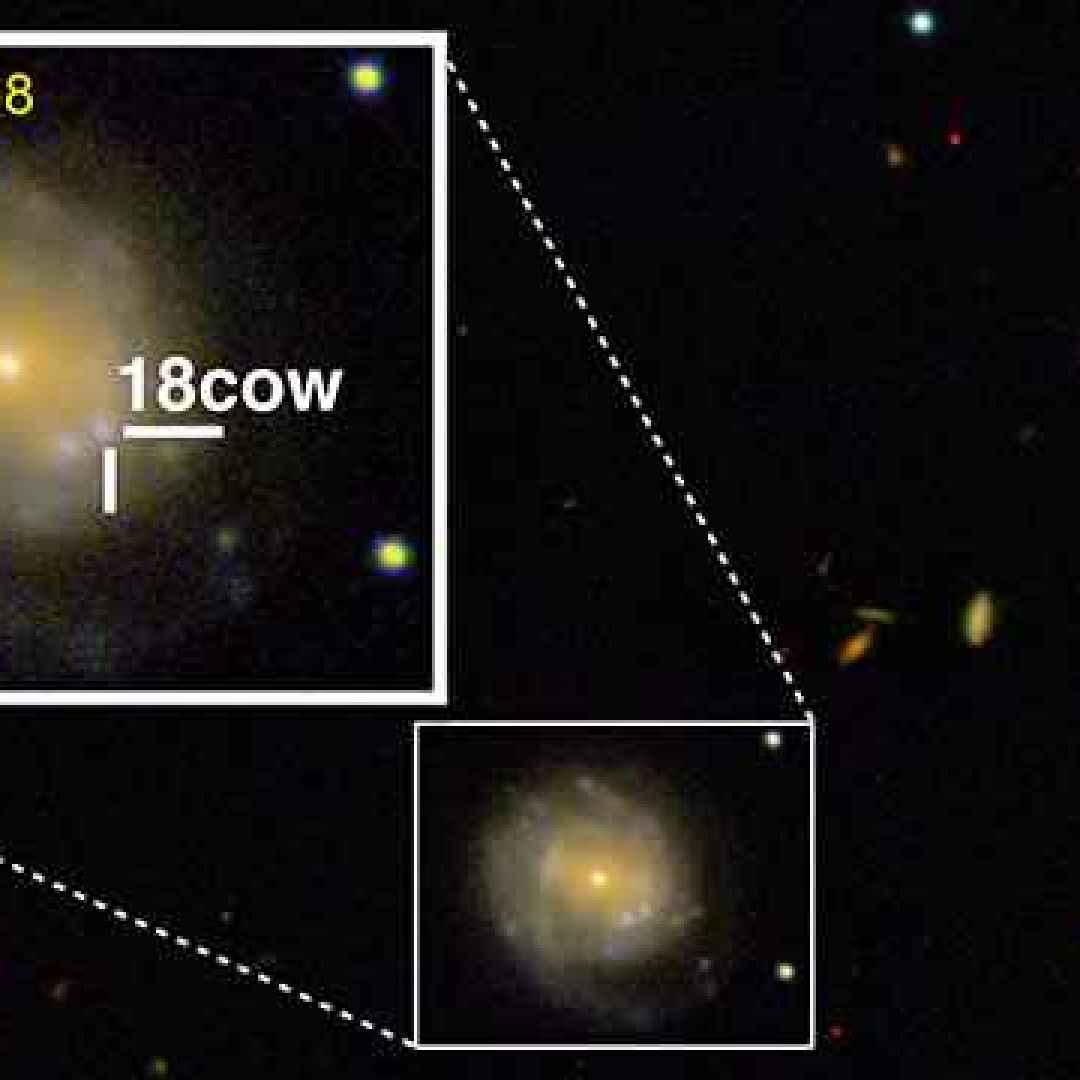 supernova  stella di neutroni  buco nero