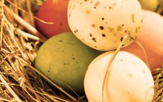uova  sicurezza alimentare  etichettatur