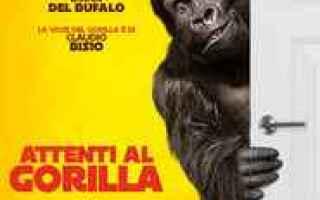 Attenti al gorilla streaming cineblog01<br />Come ci si sente se all'improvviso ci si ritrova a c