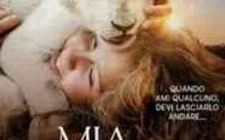 Cinema: Mia e il leone bianco film completo streaming ita