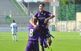Serie minori: fiorentina juventus video gol calcio