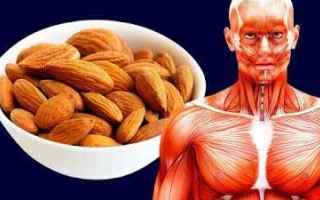 Alimentazione: salute mangiare sano corpo bellezza