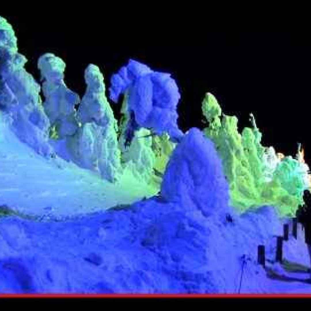 giappone  montagna  neve  inverno  sci
