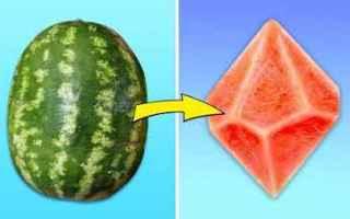 vai all'articolo completo su frutta
