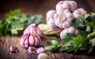 Alimentazione: aglio  superfood  alimentazione sana