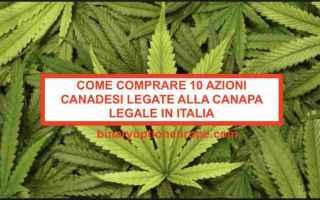 Borsa e Finanza: azioni canadesi  canapa  cannabis legale