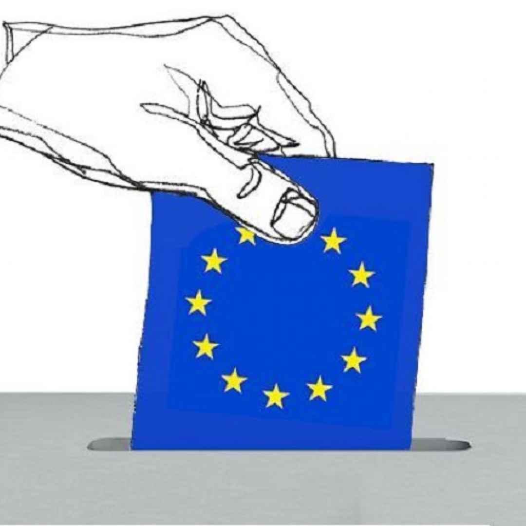 elezioni europee  parlamento europeo