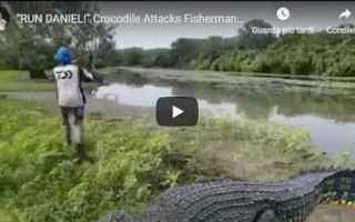 Caccia e Pesca: australia pesca coccodrillo fiume video