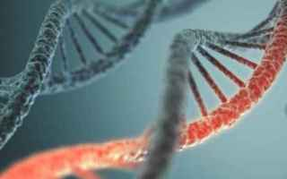 Scienze: tecnologia  medicina  scienza
