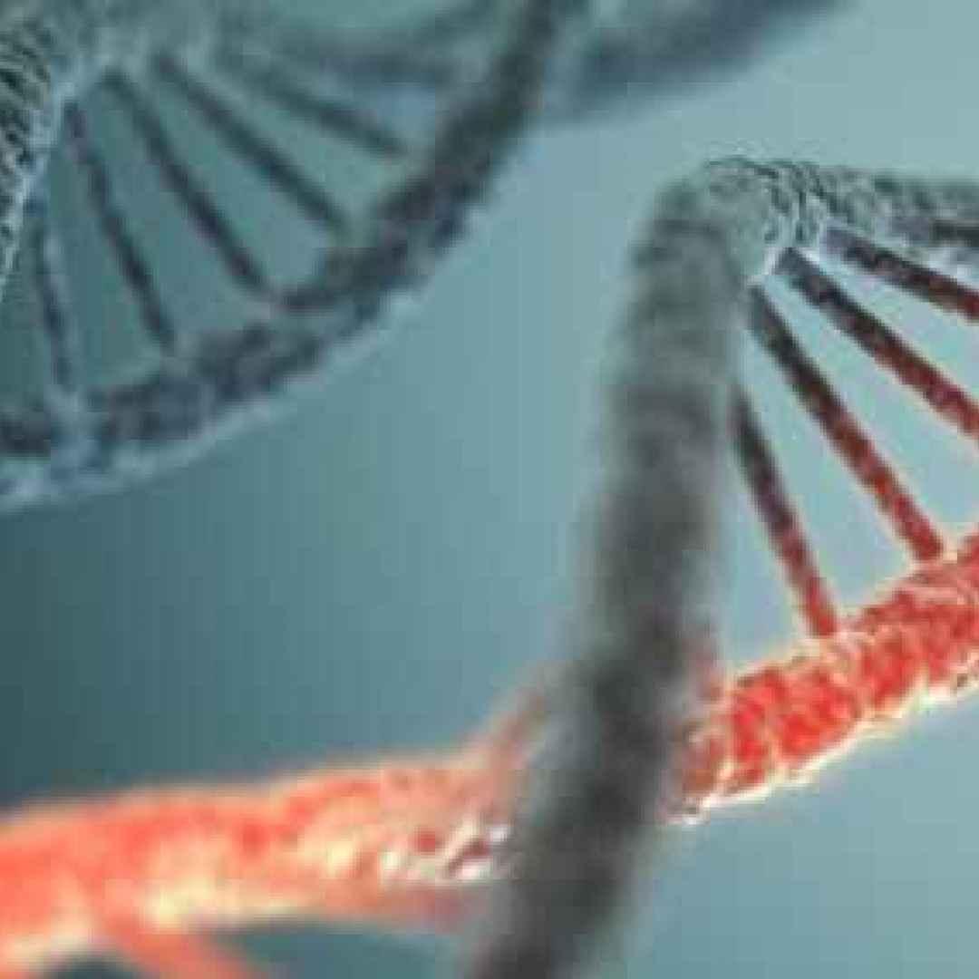 tecnologia  medicina  scienza