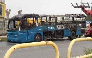 Roma: roma  trasporto pubblico  cotral