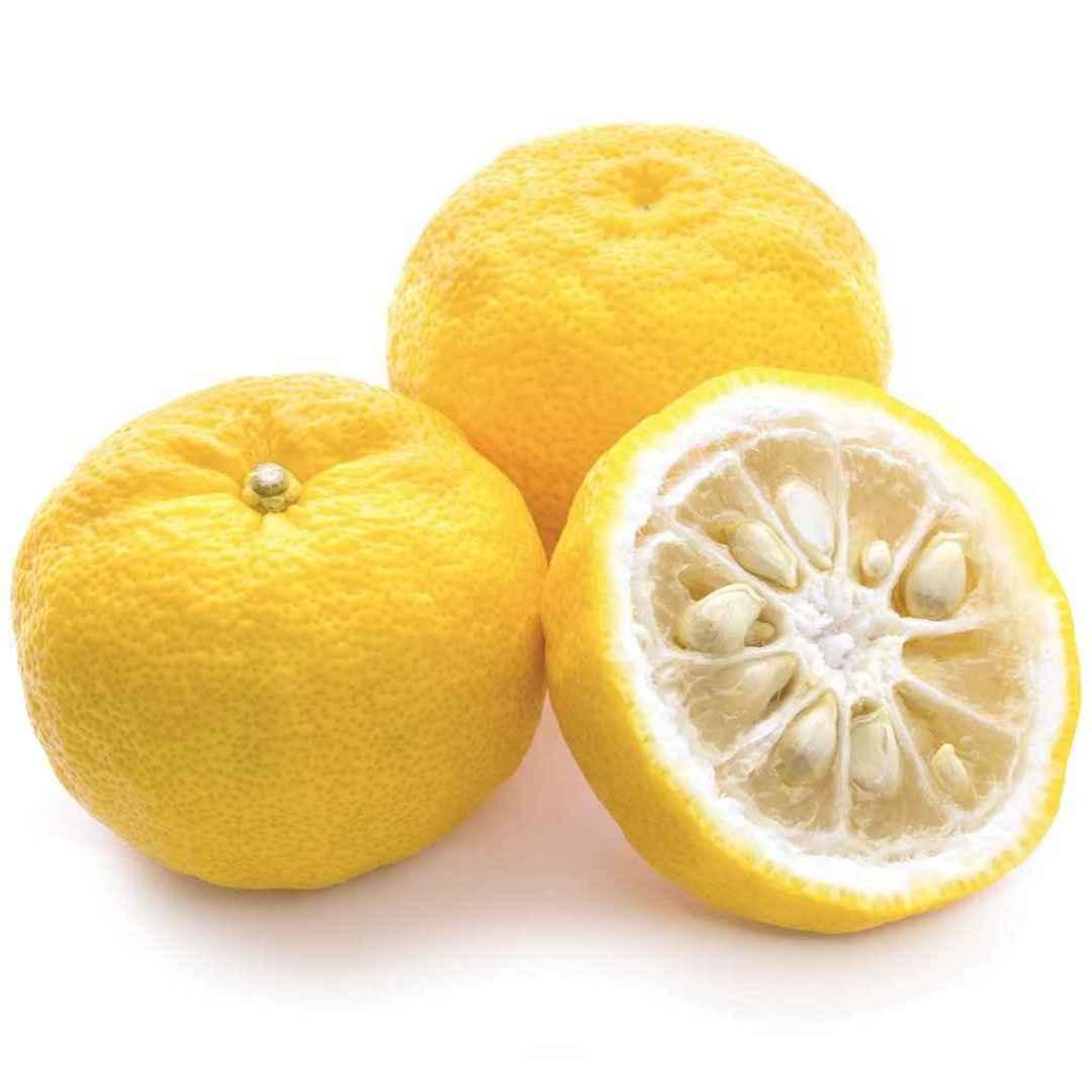 yuzu  limone  giappone  gelatina