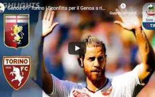 https://www.diggita.it/modules/auto_thumb/2019/04/20/1639016_genoa-torino-gol-highlights_thumb.jpg