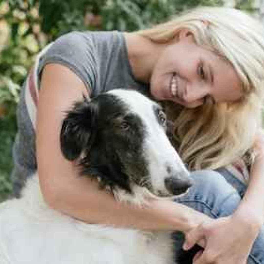 cane  addestramento cane