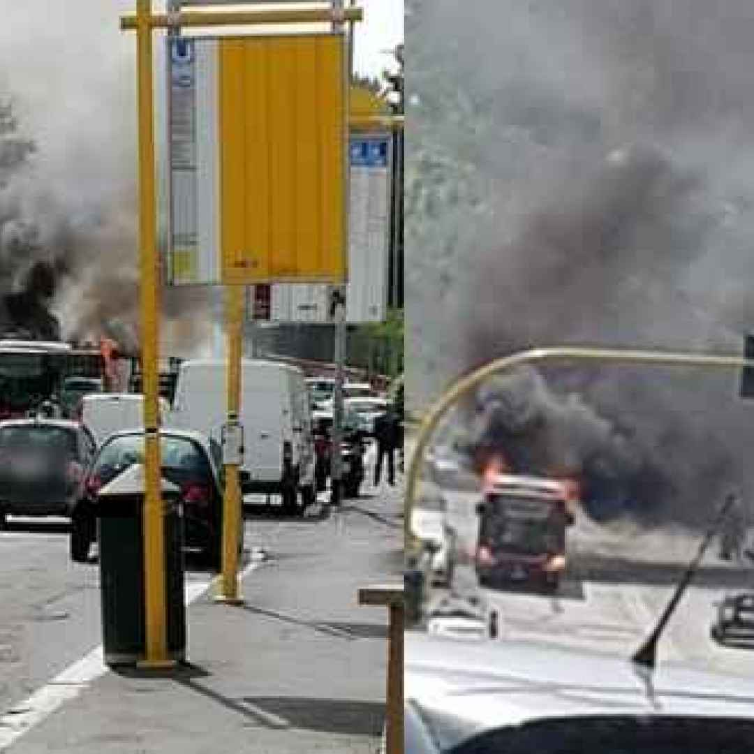 roma  trasporto pubblico  atac  flambus