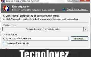 Software Video: eusing free video converter  programma