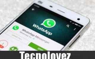 WhatsApp: (WhatsApp) Come inviare messaggi senza essere online