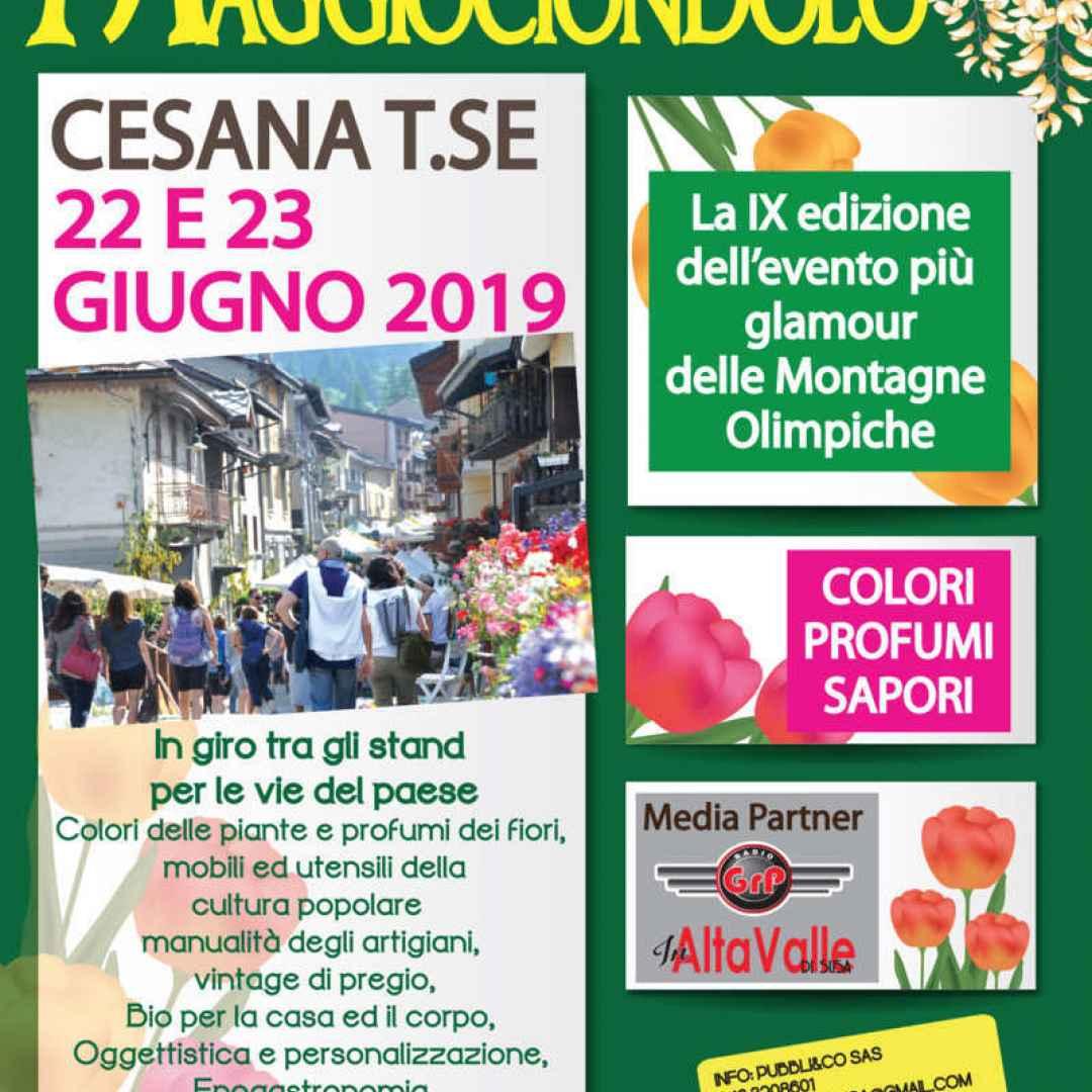 cesana  mostra-mercato  maggiociondolo