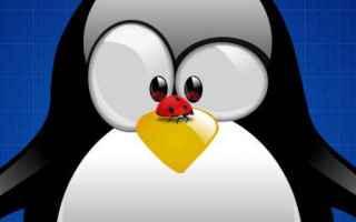 Linux: linux bug kernel