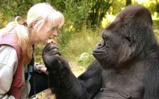 Psiche: animali  scienza  psicologia