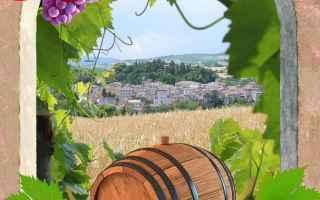 Notizie locali: pergola  vino