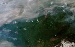 Ambiente: siberia  incendi  emergenza  clima  groe
