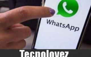 whatsapp numberneighbor whatasapp