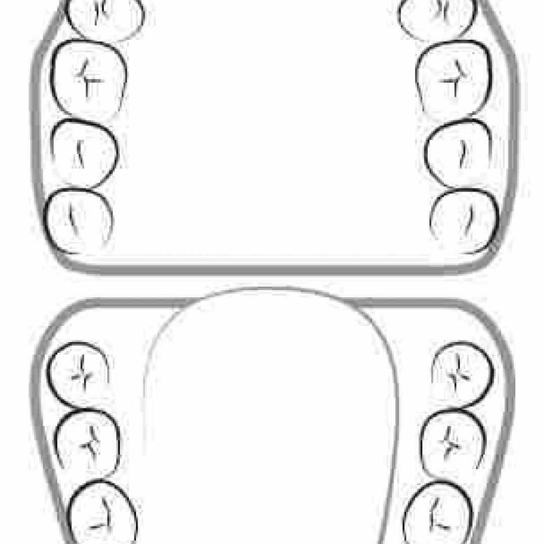 arcate dentali