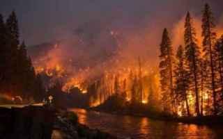 Ambiente: FIAMME IN SIBERIA: UN DISASTRO MONDIALE MOLTO PERICOLOSO PER IL PIANETA